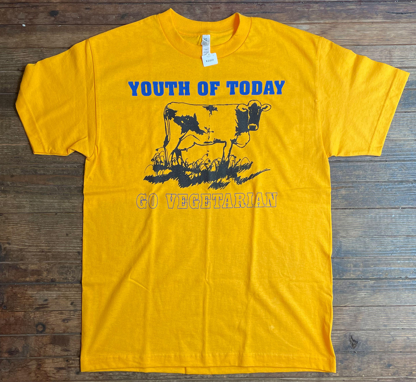 YOUTH OF TODAY Tシャツ GO VEGETARIAN LTD!!!!